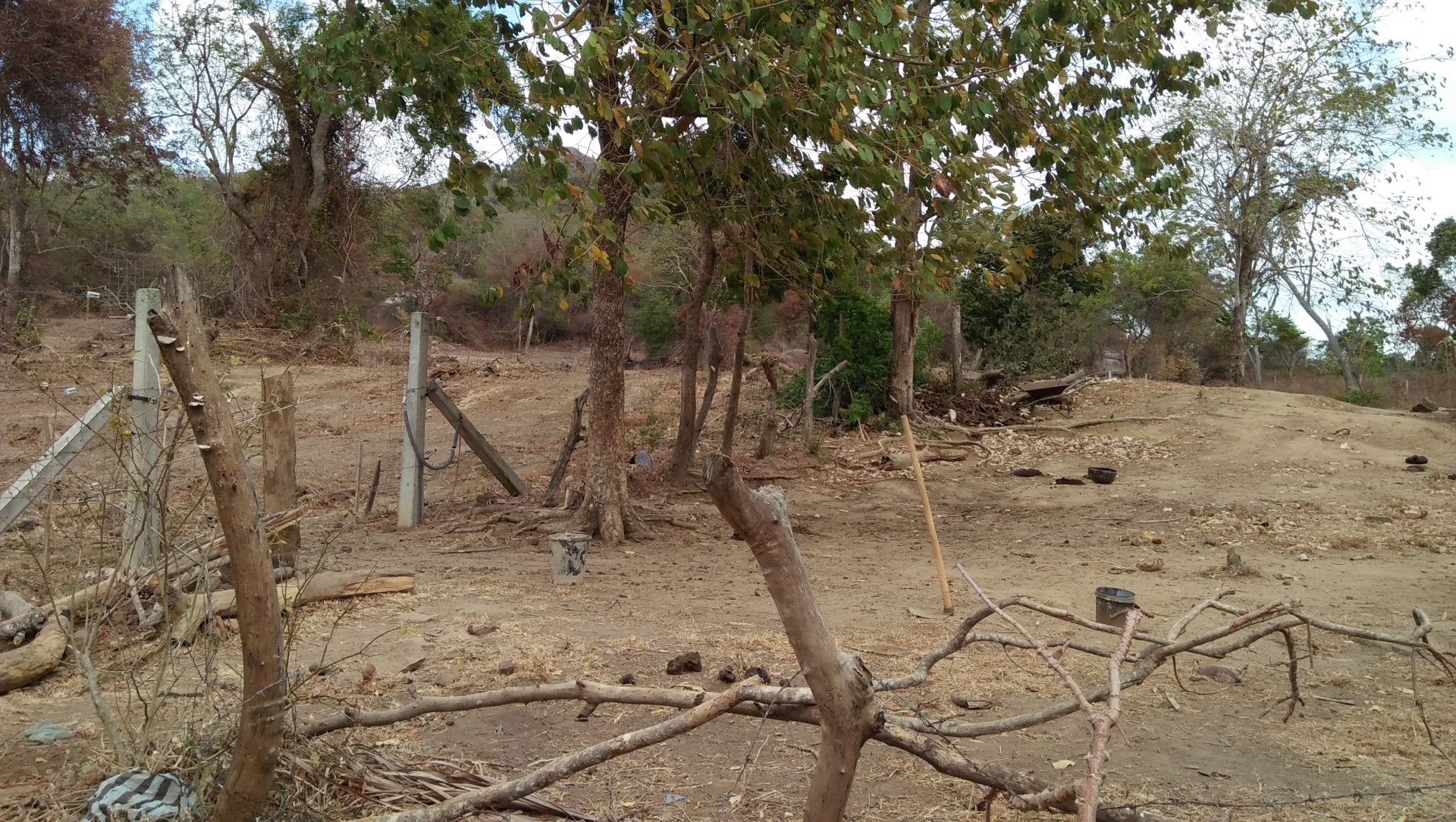 Ehetuwewa Illegal Forest Clearing And The Subsequent Erection Of An Electric Fence