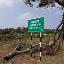 Challenging the Destruction of Wilpattu Forest Complex: EFL Takes Legal Action