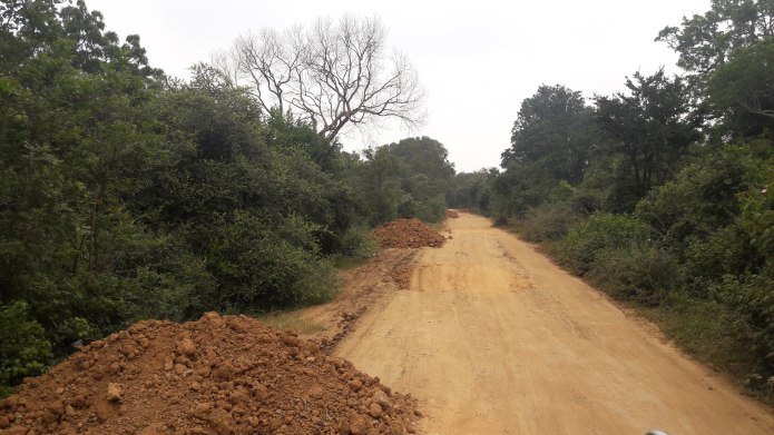 Illegal Road Through Wilpattu National Park