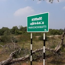 Wilpattu Forest Reserve Clearing Case