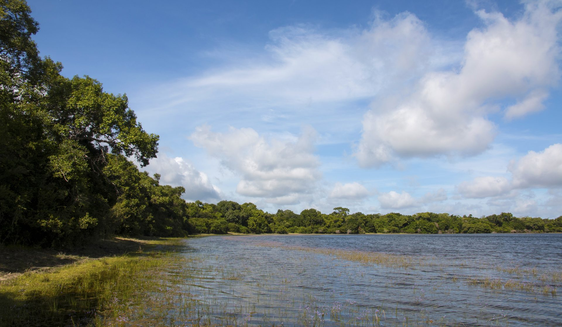 IUCN Red Listing of Ecosystems – Wilpattu Ramsar Site as a Case Study
