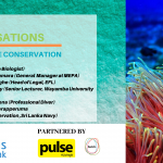 Green Conversations 5 – Marine Conservation