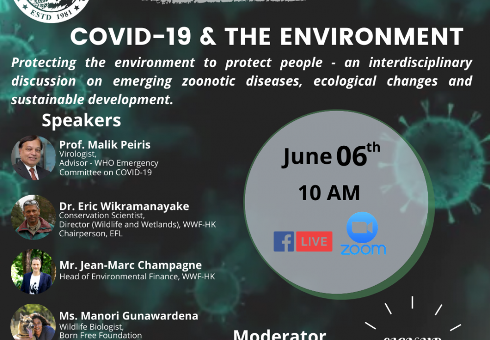 Green Conversations: COVID-19 & the Environment